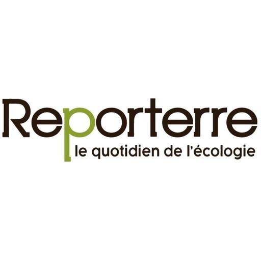 Zad de Notre-Dame-des-Landes: Macron lâche du lest