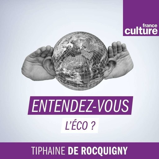 L'économie des colonies (2/3) : Congo belge : au service de Sa Majesté