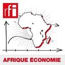Afrique économie - La RDC veut davantage transformer ses minerais