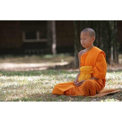 Satipatthana-Sutta - 2ème  partie - Les Sensations et l'Esprit