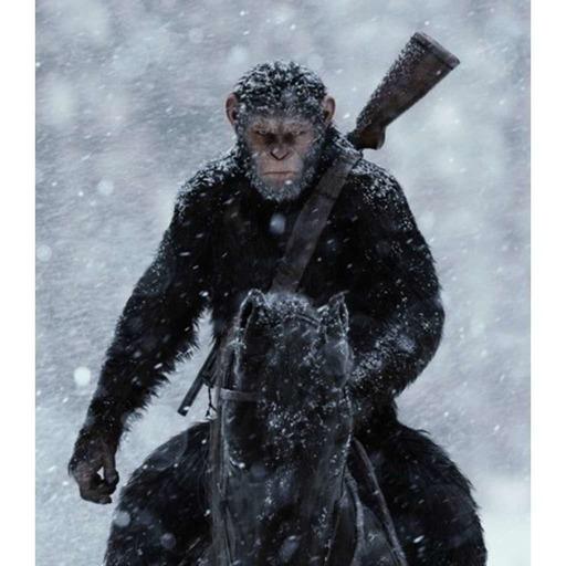 Ape List #3 - Un Singe en Hiver.mp3