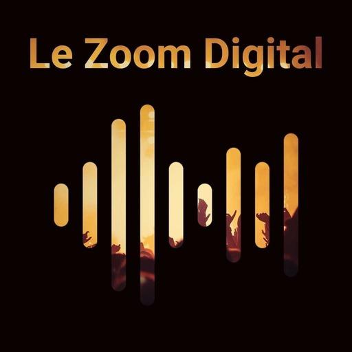Comment mettre en place une stratégie data inter-services | Le Zoom digital – Podcast #2