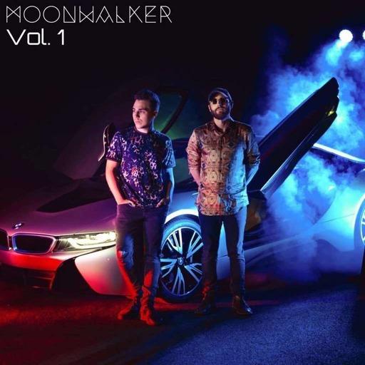 EP95 - Moonwalker - Part III - Sean Vs. Wild Podcast