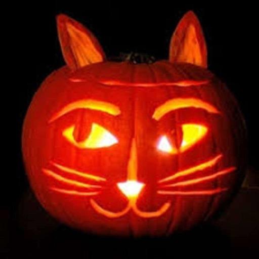 Catman Jack's 50's Hop - Show 34 - October 2017