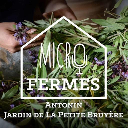 Episode 4 - La Petite Bruyère.mp3