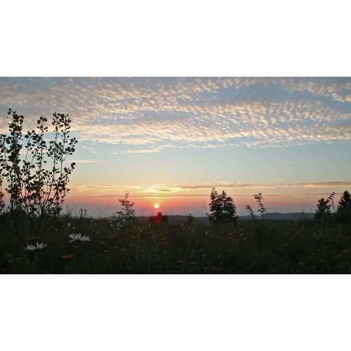 Devant le coucher du soleil