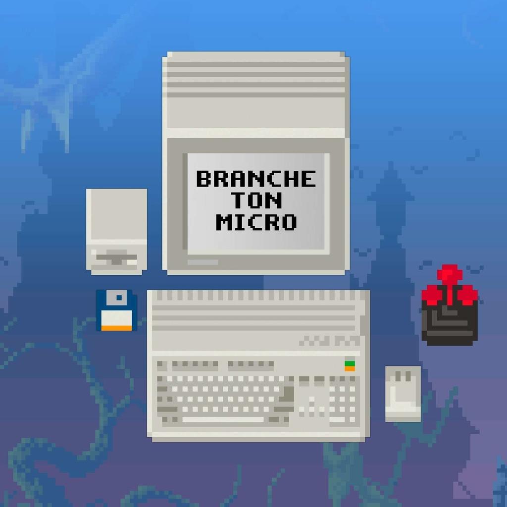 Branche Ton Micro