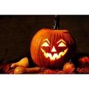 House of Pumpkins 2021-10-20