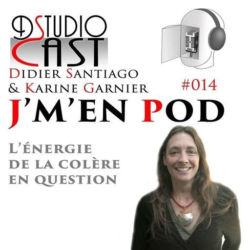L_energie_de_la_colere_en_question_avec-Karine_Garnier_et_Didier_Santiago.mp3