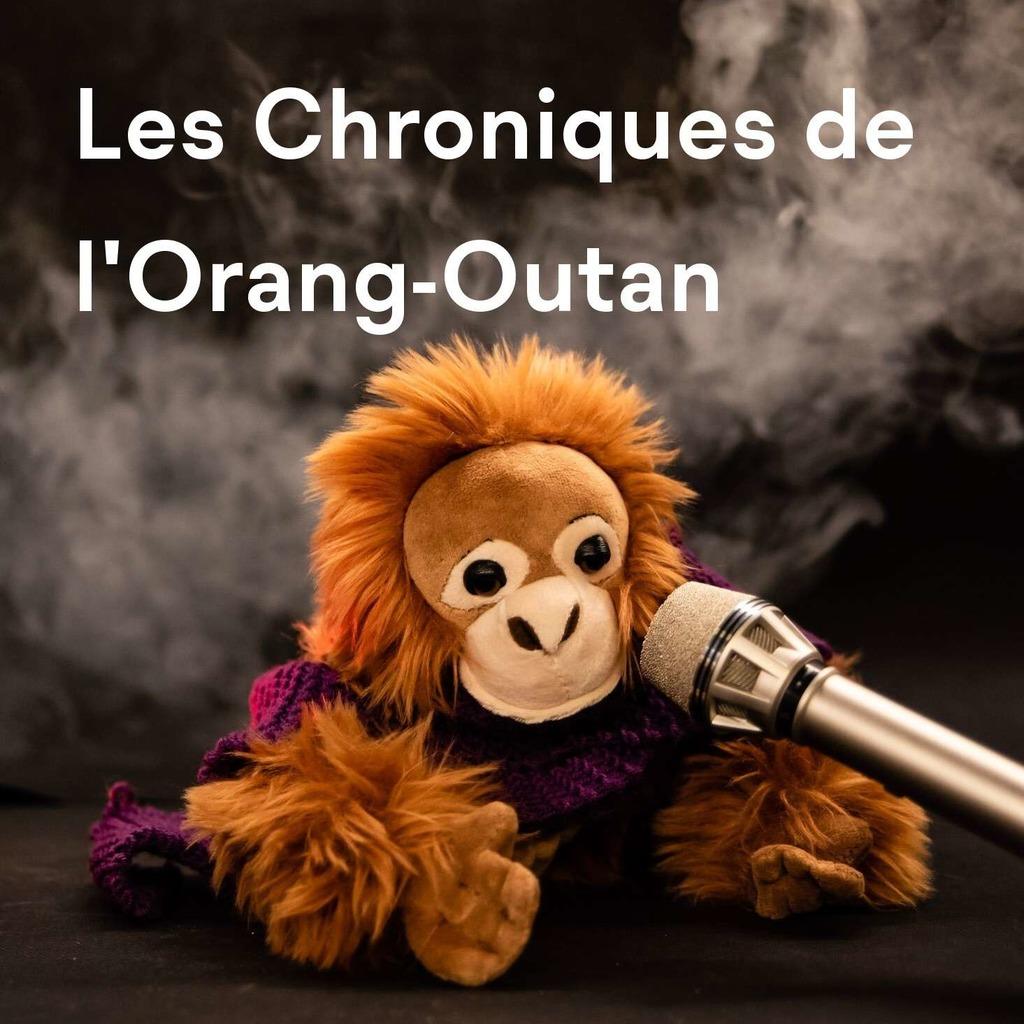 Les Chroniques de l'Orang-outan