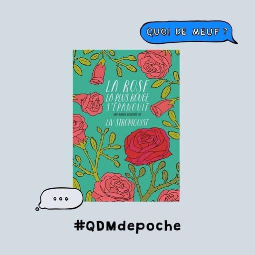 """#62 - QDM de poche - Le livre """"La Rose la plus rouge s'épanouit"""" de Liv Strömquist"""