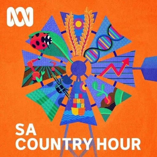 South Australian Country Hour