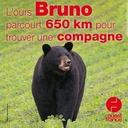 6 juillet 2020 - L'ours Bruno parcourt 650 km pour trouver une compagne - Sur le pouce