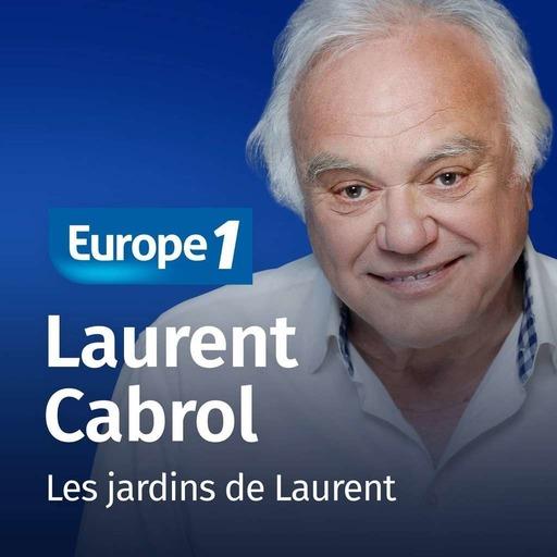 Les jardins de Laurent - Laurent Cabrol