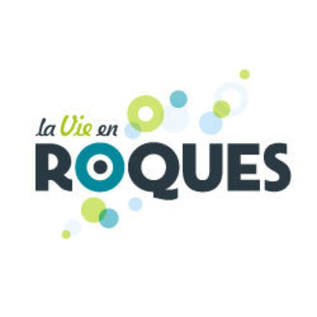 Conseil Municipal Roques