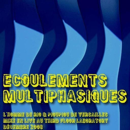 Ecoulements Multiphasiques - Décembre 2008