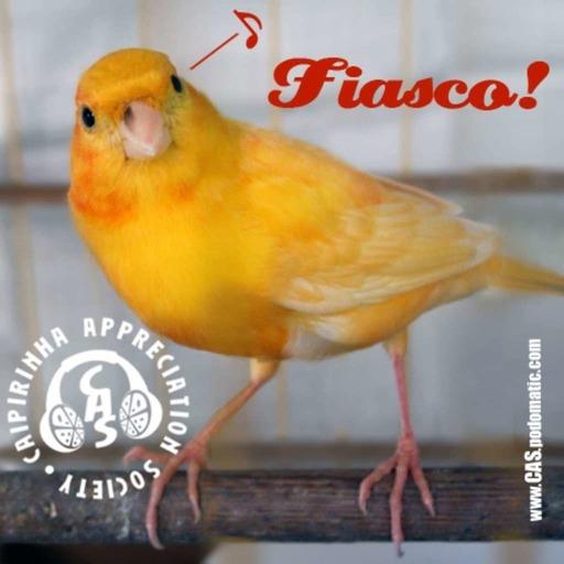 CAS 240 | Fiasco!