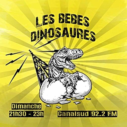 Bébés Dinosaures, 30 décembre 2012