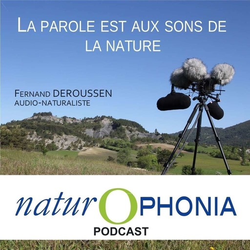NATUROPHONIA_podcast_057_FDeroussen.mp3