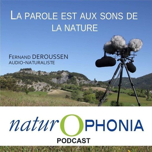 NATUROPHONIA_podcast_051_FDeroussen.mp3