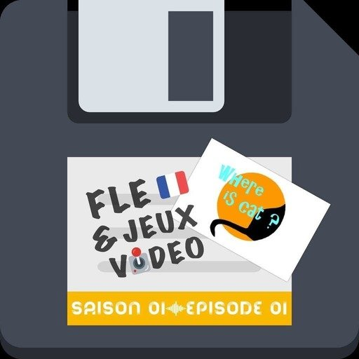 exploiter-le-jeu-video-where-is-cat-en-cours-fle.mp3