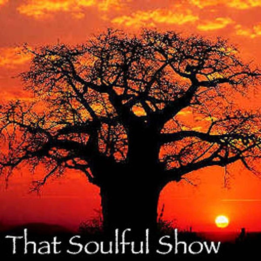 That Soulful Show : Dj TuXxL