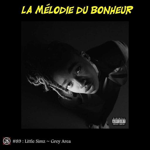 LMDB #89 : Little Simz explore cinquante nuances de gris