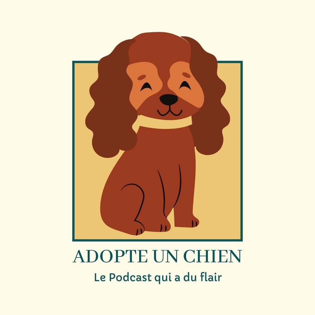 Adopte un chien