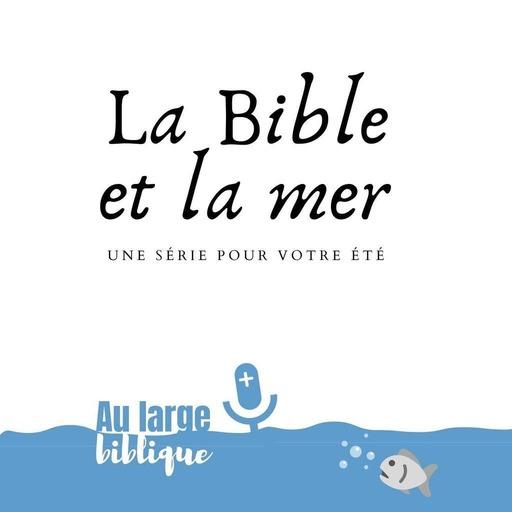 #93 La Bible et la mer (5) Quand un marin marche sur les eaux