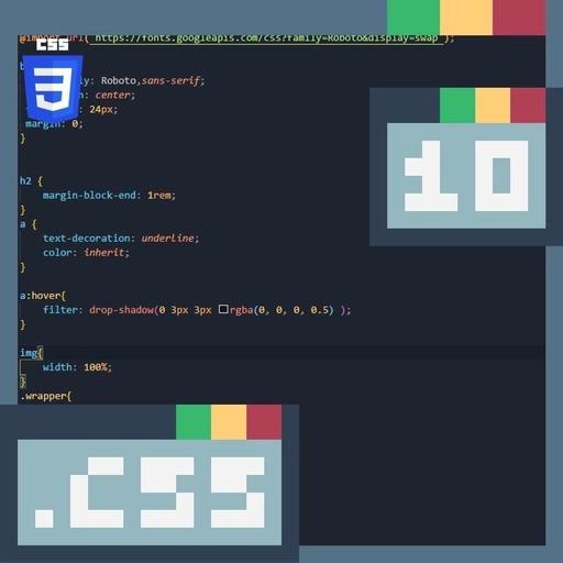 #10 Script.css : CSS