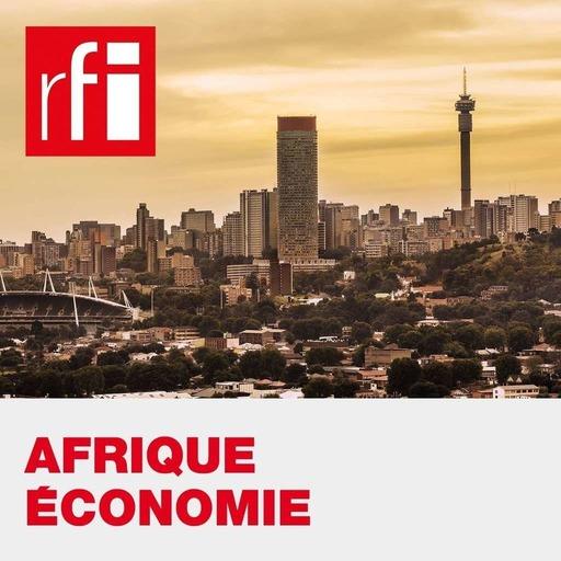 Afrique économie - Les entreprises françaises attendent la Zlecaf avec impatience