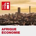 Afrique économie - La CEMAC cherche à dynamiser ses économies