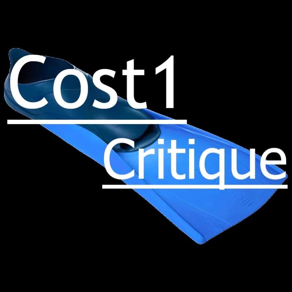 Cost1 Critique