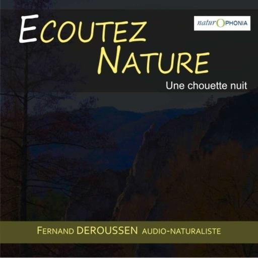 EN103_Chouettenuit_2020022001_FDeroussen.mp3