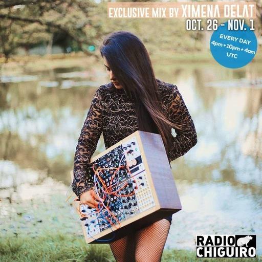 Chiguiro Mix #115 - Ximena Delat