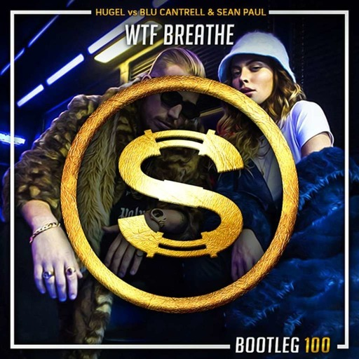Hugel vs Blu Cantrell x Sean Paul - Wtf Breathe (Da Sylva bootleg)