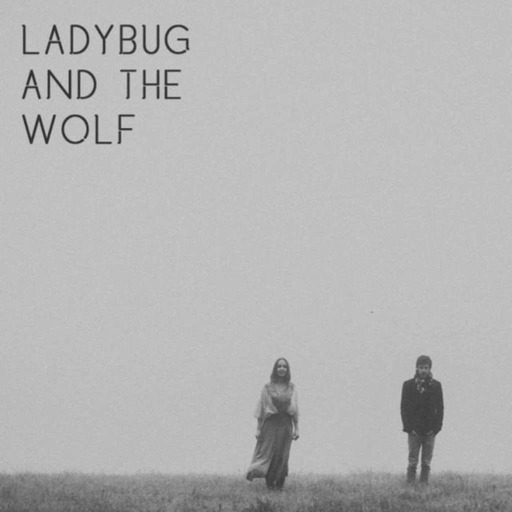ladybug and the wolf 1