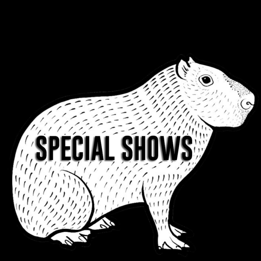 Radio Chiguiro - Special shows