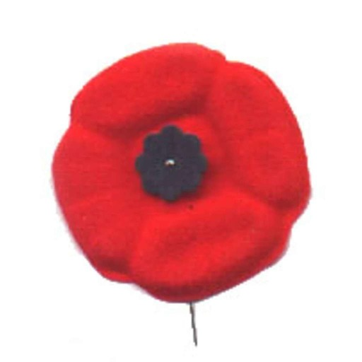 RADIO ACTION ANNUAL REMEMBRANCE DAY/VETERANS DAY PROGRAM