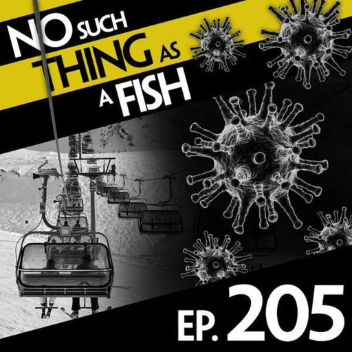 205: No Such Thing As The Number Six