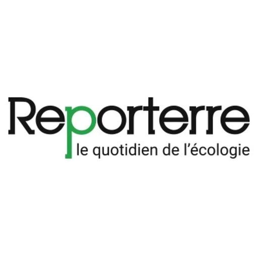 Notre-Dame-des-Landes: sur la Zad, manifestation sereine et déterminée