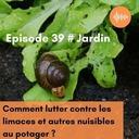 Podcast 39 // Comment repousser les limaces et autres nuisibles au potager ?