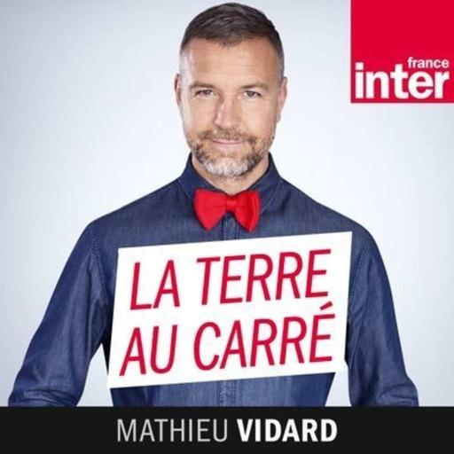 """Nadir Dendoune : """"En Australie, c'est la première fois que je suis devenu français"""""""