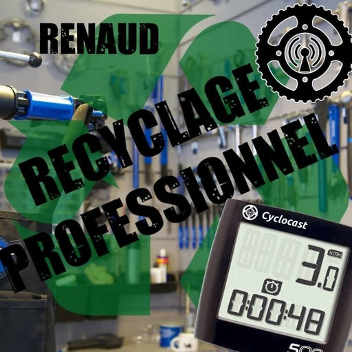 Recyclage Professionnel 03 – Renaud