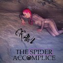The Spider Accomplice 3QS041