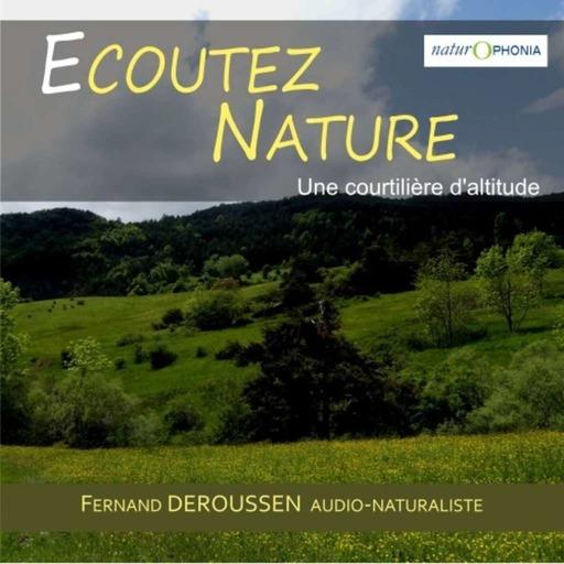EN126_Unecourtilieredaltitude_2020050314_FDeroussen.mp3