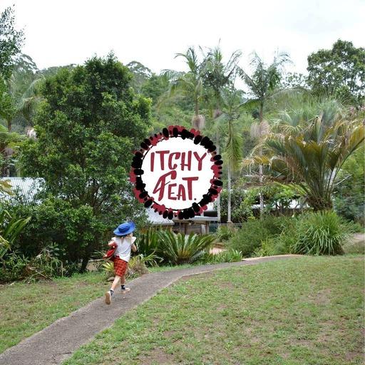 Dans la forêt tropicale, une école alternative