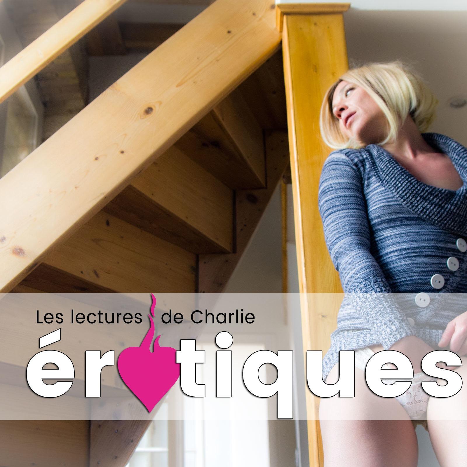 La bourgeoise, très bon roman porno G. Debrisac