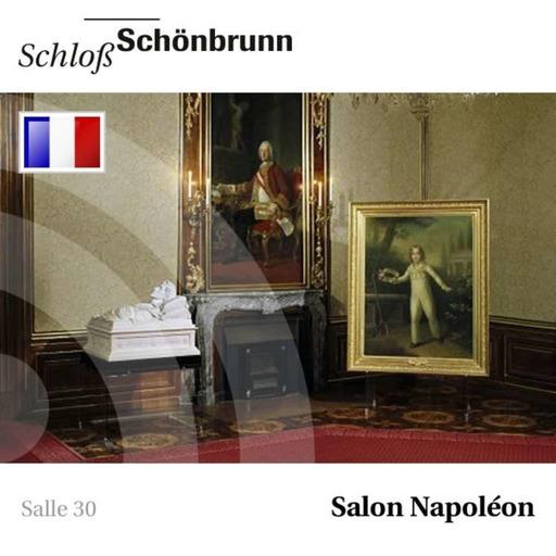 30 - Salon Napoléon