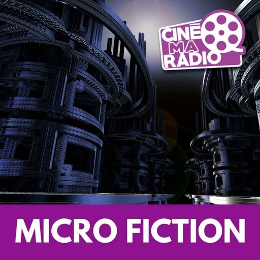 micro-fiction-n18-le-voyage-fantastique.mp3